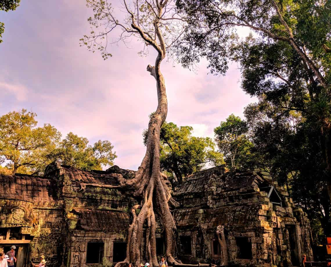 Things to do in Cambodia Siem Reap Phnom Penh