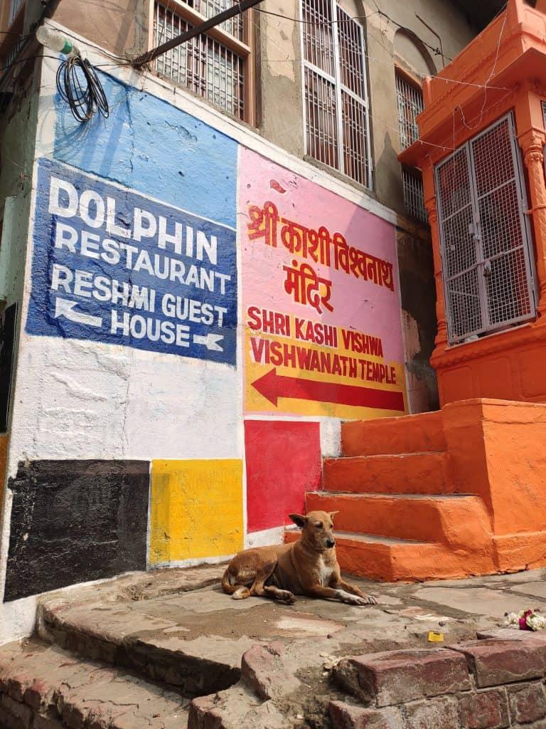 48 hours in Varanasi streets