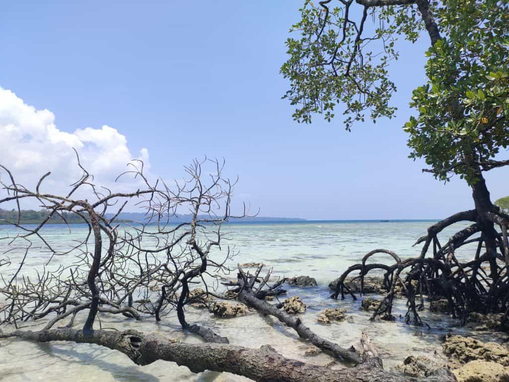 4 day Andaman itinerary Havelock beach sights