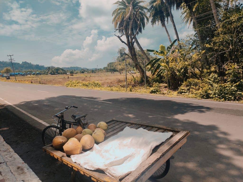 4 day Andaman itinerary Havelock